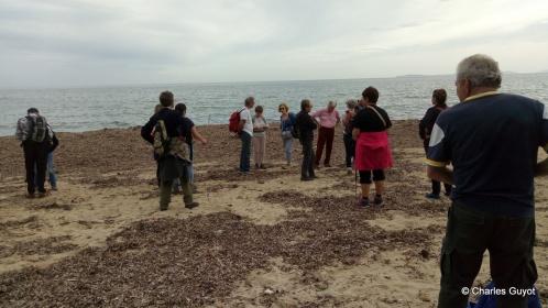 littoral gigaro 1504 (14)