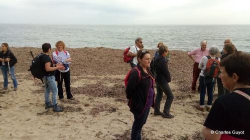 littoral gigaro 1504 (15)