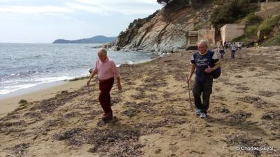 littoral gigaro 1504 (24)