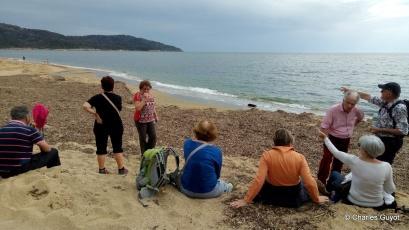 littoral gigaro 1504 (5)