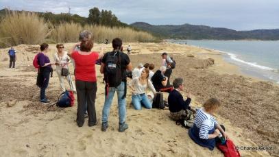 littoral gigaro 1504 (6)